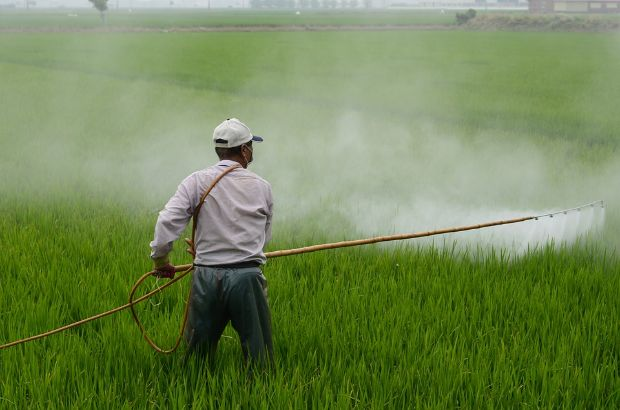 A farmer treating field with pesticide