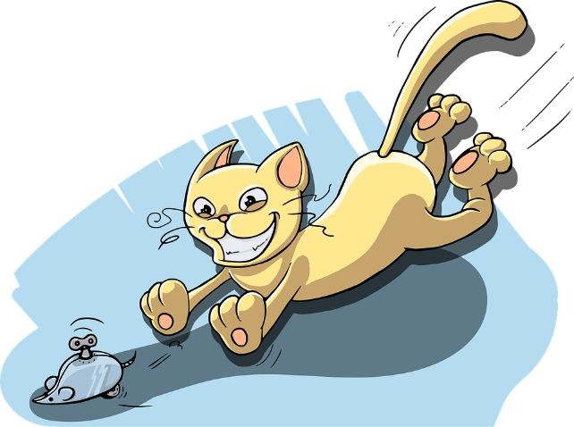 A cat chasing a wind-up mouse