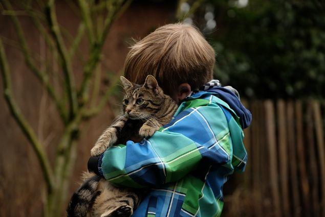 A child hugging a cat