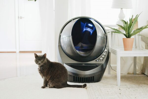 best automatic cat litter boxes